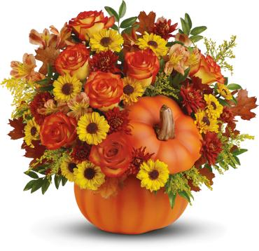 Warm Fall Wishes Pumpkin