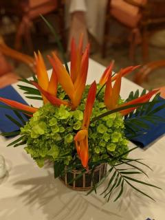 Heliconia and Green Hydrangea