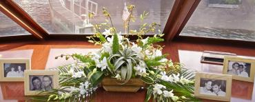 Air plants and orchids