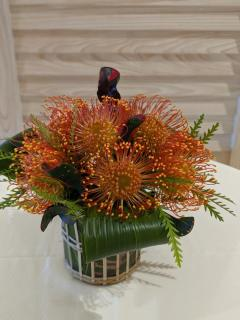 Orange Pin Cushion Protea